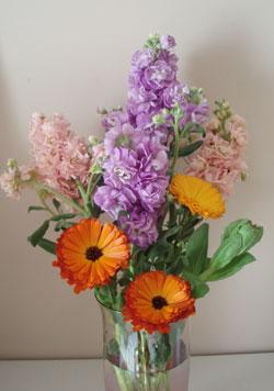 flower_5_4.jpg