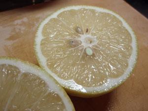 hahajima_lemon2.jpg