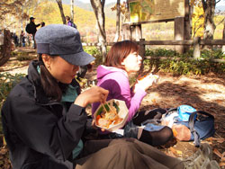 nikko_yamaclub2.jpg