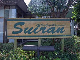 suiran_1.jpg