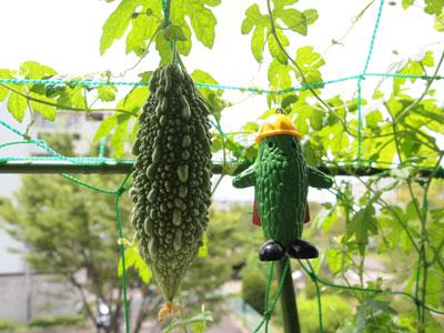 sumo_garden_0726.jpg